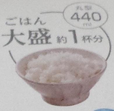 ご飯大盛り1杯分、440mlの容量があることを示すパッケージの表記